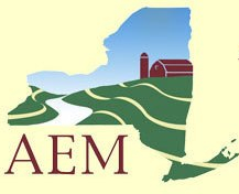 aem_home_logo